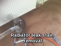 Radiator leak stain removal in Dedham